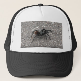 Boné Tarantula