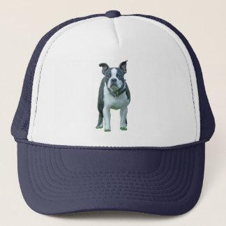 Boné Terrier 1b de Boston