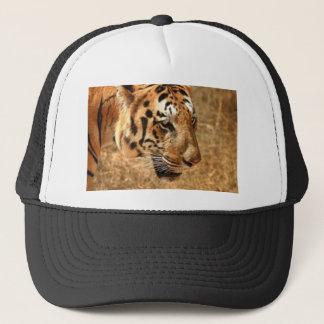 Boné Tigre que desengaça em India