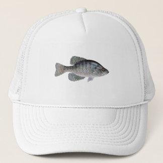 Boné Tipo de peixe branco