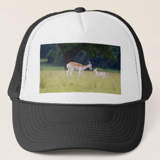 Boné Um cervo de Fallow (gama) com jovem corça