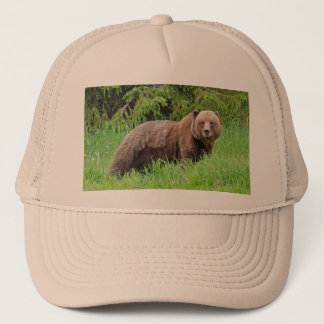 Boné Urso no chapéu do camionista da grama