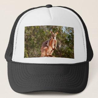 Boné Wallaby de rocha amarelo-footed australiano