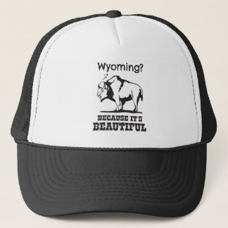 Boné Wyoming? Porque é bonito