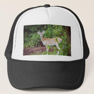 Boné Young Buck no veludo