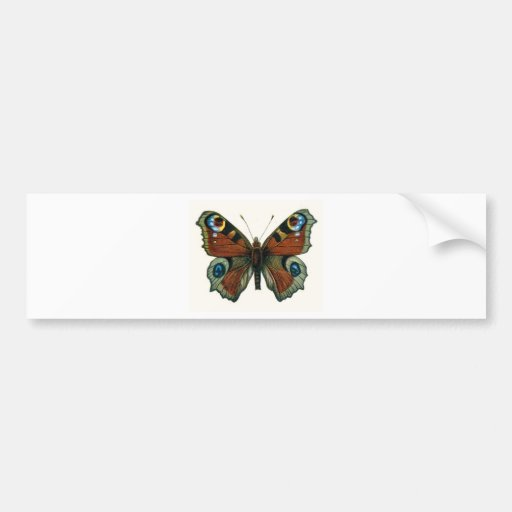 borboleta adesivo