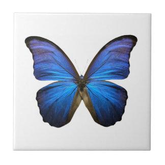 Borboleta azul brilhante azulejo de cerâmica