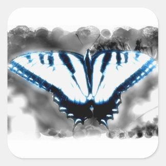 Borboleta azul de choque adesivo quadrado