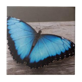 Borboleta azul de Morpho Azulejos De Cerâmica