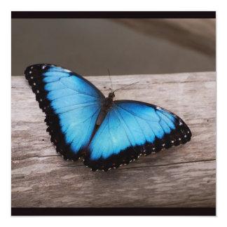 Borboleta azul de Morpho Convite Personalizados