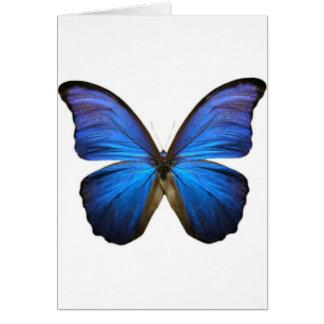 Borboleta azul elétrica bonita cartão comemorativo