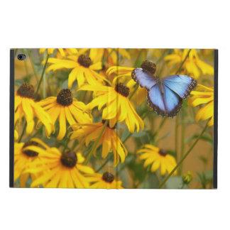 Borboleta azul em flores amarelas