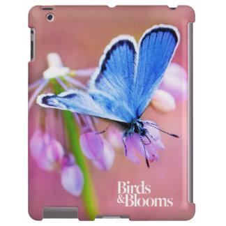 Borboleta Azure Capa Para iPad