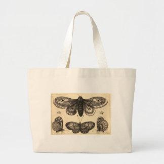 borboleta bolsas