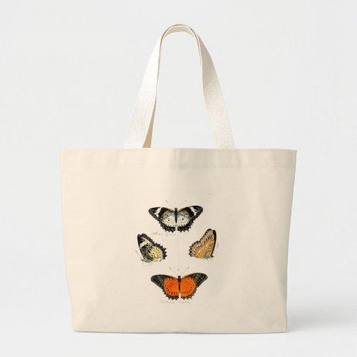 borboleta bolsa
