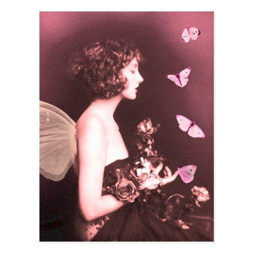 Borboleta, borboleta cartao postal