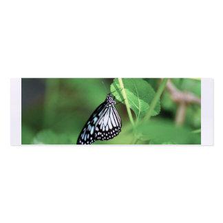 borboleta cartão de visita skinny