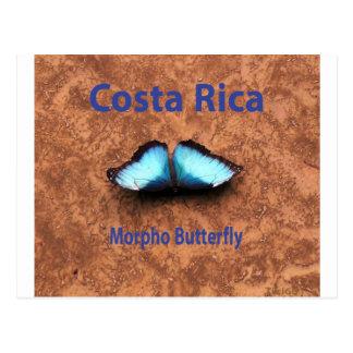 Borboleta Costa Rica de Morpho Cartão Postal