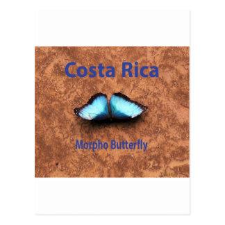Borboleta Costa Rica de Morpho Cartões Postais