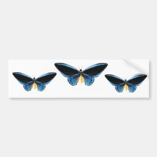 Borboleta de Birdwing Adesivo