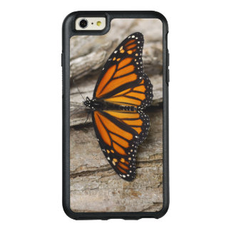 Borboleta de monarca
