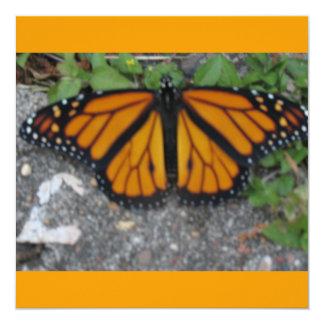 Borboleta de monarca convite quadrado 13.35 x 13.35cm