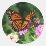 Borboleta de monarca na flor do Lantana Adesivos Redondos