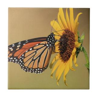 Borboleta de monarca no girassol azulejos de cerâmica