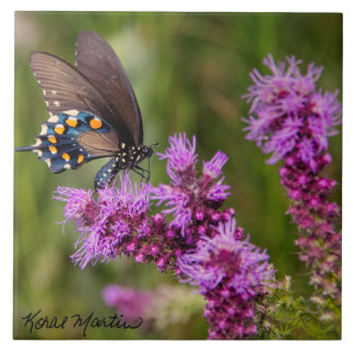 Borboleta de Swallowtail no grande azulejo