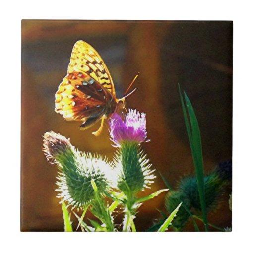 Borboleta do verão azulejo de cerâmica