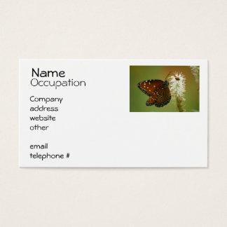 Borboleta e joaninha cartão de visitas