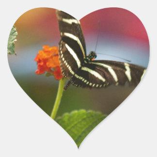 Borboleta listrada da zebra adesivo coração