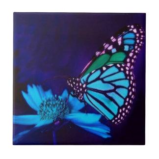 Borboleta na luz azul azulejos