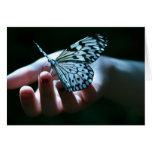 borboleta na mão cartoes