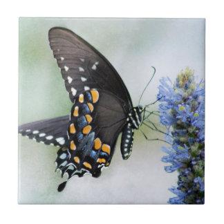 Borboleta no azulejo azul da flor