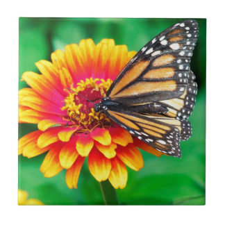 borboleta numa flor azulejos de cerâmica