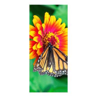 borboleta numa flor convite