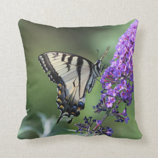 Borboleta oriental do swallowtail do tigre almofada