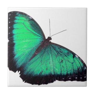 Borboleta verde azulejos de cerâmica