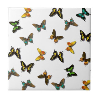 borboletas azulejo