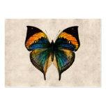Borboletas da ilustração 1800's da borboleta do cartoes de visita
