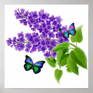 Borboletas em flores do Lilac Pôsteres