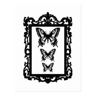 borboletas pretas na moldura para retrato do vinta cartão postal