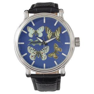 Borboletas, traças e lagartas coloridas relógio de pulso