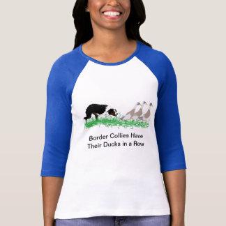 Border collie que reune camisas (luz)