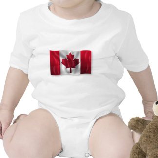 Bordo canadense da folha do emblema do país da ban babador