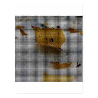 Bordo tecido cartão postal
