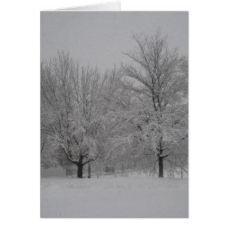Bordos vermelhos do inverno cartão comemorativo
