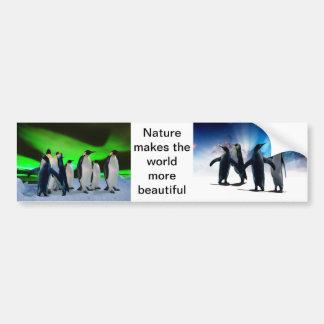Borealis e pinguins da Aurora Adesivo Para Carro