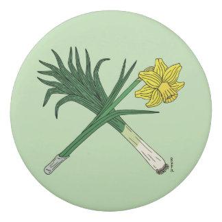 Borracha Alho-porro e Daffodil cruzados